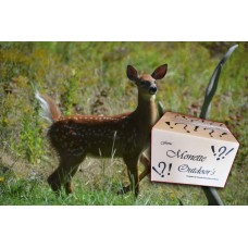 Deer 2262 Deer Surprise Gift Box Complete saline Set. Whitetail